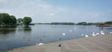 mazury-ostroda-nocleg-konferencje-przyjecia-wesela-45-450x211 Galeria - Dom Polonii i miasto Ostróda