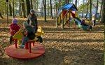 park-collinsa Atrakcje w Ostródzie